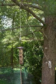 Bird Feeder Pulleys | Pulley System I Rigged To Lower The Bird ... Some Ways To Keep Our Backyard Birds Healthy Birds In The These Upcycled Diy Bird Feeders Are Perfect Addition Your Two American Goldfinches Perch On A Bird Feeder Eating Top 10 Backyard Feeding Mistakes Feeder Young Blue Jay First Time Youtube With Stock Photo Image 15090788 Birdfeeding 101 Lover 6 Tips For Heritage Farm Gardenlong Food Haing From A Tree Gallery13 At Chickadee Gardens Visitors North Andover Ma