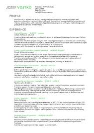 Several Project Manager Cv Sample
