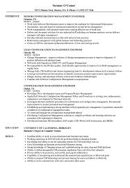 Download Configuration Management Engineer Resume Sample As Image File