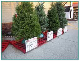 Gallery Of Christmas Tree Disposal Bags Home Depot