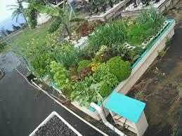 How To DIY A Backyard Aquaponics Garden Video The Aquaponics System