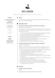 Veterinary Technician Resume Summary Example And