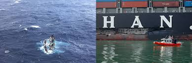 Hms Bounty Sinking 2012 by You Say Collision I Say Allision Let U0027s Sort The Whole Thing Out