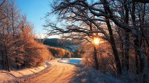Download Winter Sunrise Country Road Trees Wallpaper Iphone 6 Plus