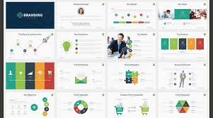 Infographic Resume Examples Professional Powerpoint Resumes Example 0d
