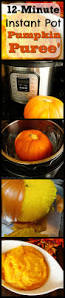 Pressure Canning Pumpkin Puree by How To Cook A Whole Pumpkin In An Instant Pot 12 Minute Pie