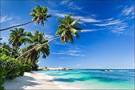 muralo fototapete strand 180 x 270 cm vlies tapete wandtapete ozean himmel palmen wohnzimmer schlafzimmer moderne wandbilder natur panorama wasser