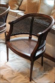 Furniture Marvelous Painting Rattan Furniture Luxury Painting