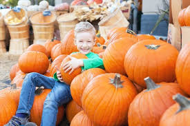 Milton Pumpkin Festival Pageant by Cheap And Free Fall Festivals In All 50 States Cheapism