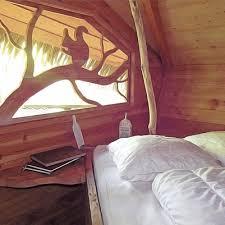 chambre arbre dormir dans une cabane dans les arbres sur un arbre perché