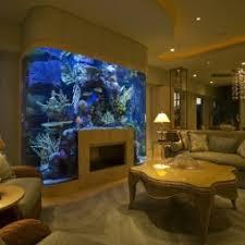 schöne aquarium ideen nettetipps de