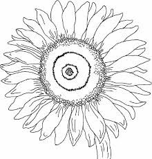 Sunflower Coloring Pages Printable Free Flowers Colouring For Little Kids Simple