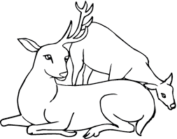 Click To See Printable Version Of Deer With One Antler Coloring Page