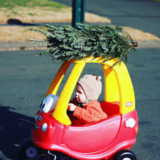Real Christmas Trees Kmart by Baker U0027s Christmas Tree Farm Home Facebook