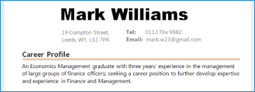Example Of A Career Summary Or Profile On CV