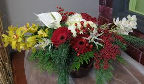Whoville Christmas Tree Edmonton by Edmonton Christmas Flowers Online Delivery Or Pickup