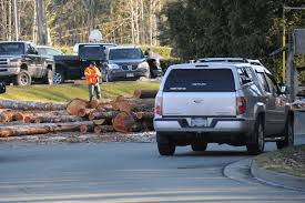100 Logging Truck Accident VIDEO BC Logging Truck Had A Close Call Minutes Before It Crashed