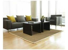 Anji Mountain Seagrass Rectangular Sabertooth Area Rug