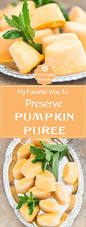 Freeze Pumpkin Puree From Can by My Favorite Way To Preserve Pumpkin Puree Healing Tomato Recipes