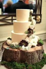 Log Cake Stand Slice Wedding A Real Rustic Tree Trunk Brand New Wooden Nz