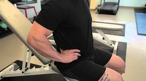 substitute for roman chair exercise professional workout tips