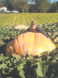 Largest Pumpkin Ever Grown 2015 by Local Man Claims Pennsylvania Giant Pumpkin Record News