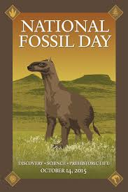 Agate Fossil Beds by National Fossil Day Features The Moropus Found At Agate Fossil