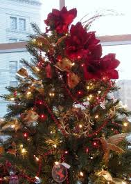 Christmas Tree Toppers Ideas by Christmas Tree Topper Inspiration From The Akron Tree Festival