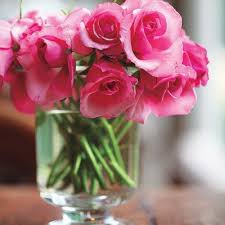 16 best preserving flowers images on Pinterest