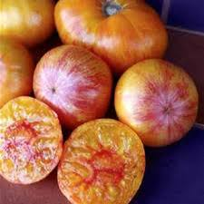 Conners Pumpkin Patch Jacksonville Fl by Find Local Tomatoes From Jacksonville Fl Farms And More
