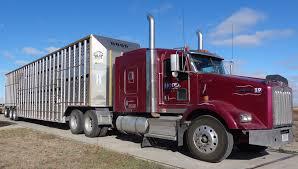 100 Coffman Trucks Hauling Cattlemens Choice