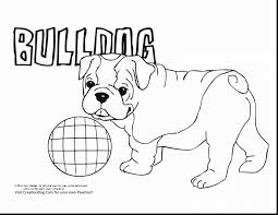 Amazing Bulldog Puppy Coloring Pages With And Planes