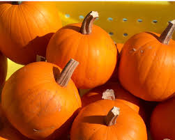 Leeds Pumpkin Patch Columbus Ohio by Fall Activities In Columbus Ohio Capital City Mama