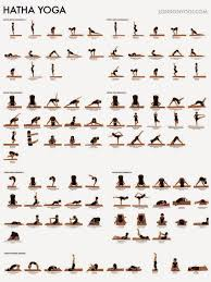 Yoga For Beginners Poses Fitness