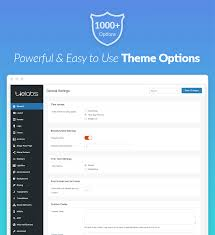 Powerful And Easy To Use Theme Options