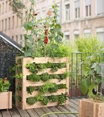 grand pot tokyo pour cultiver un potager au balcon botanic