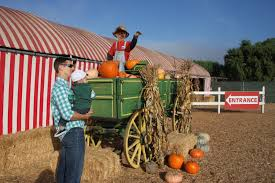 Pumpkin Patch Animal Farm In Moorpark California by A Better Life With Burgers October 2015