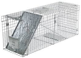 live cat trap havahart 1089 collapsible one door live animal cage trap for