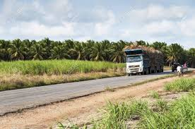 Truck For The Transport Of Sugar Cane For The Production Of Ethanol ... Wwe Embraces Ip Expands Footprint With New Trio Of Nep Trucks Talking Points From Raw 150118 2bitsports Hss Manufacturer Orders 70 New Hyster Trucks Daimler Takes A Jab At Tesla Etrucks Plan As Rivalry Heats Up Eleague Boston Major 2018 Cloud9 Wning Moment The Mobile Production Hartland Productions Llc Quarry Truck Stones Stock Photos Dpa Two Employees Pictured In Production Truck And Machine Ford Makes Alinumbodied F150 Factory Henry Built Russia Moscow May 17 The Man Is Driving His For Roh Wrestling On Twitter A Peak Inside Bitw