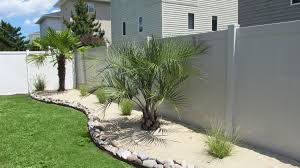 Virginia Beach Palm Tree Design Front Yard Landscaping With Palm Trees Faba Amys Office Photo Page Hgtv Design Ideas Backyard Designs Wood Above Concrete Wall And Outdoor Garden Exciting Tropical Pools Small Green Grasses Maintenance Backyards Cozy Plant Of The Week Florida Cstruction Landscape Palm Trees In Landscape Bing Images Horticulturejardinage Tree Types And Pictures From Of Houston Planting Sylvester Date Our Red Ostelinda Southern California History Species Guide Install