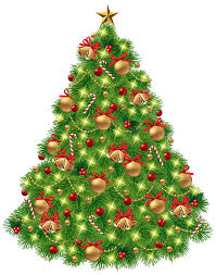 Best Type Of Christmas Tree by 19 Best Type Of Christmas Tree Corning Olive Oil Clipart