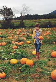 Pumpkin Patch Rides by Best 25 Pumpkin Patches Ideas On Pinterest Pumpkin Patch Kids