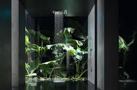 jungle im bad so gelingt der tropenlook reuter