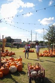 Best Pumpkin Patch Fort Worth Tx by Corn Maze Pumpkins U0026 Hay Rides It U0027s Hall U0027s Pumpkin Farm U2014 Mozdeb