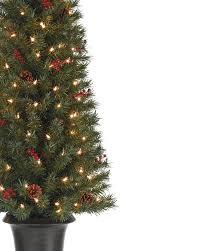 Potted Christmas Tree by Pine Tree For Christmas Christmas Lights Decoration