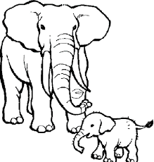 Nice Coloring Pages Of Elephants Book Design For KIDS