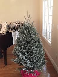 Fraser Fir Christmas Trees For Sale by Cartner Christmas Tree Farm Place An Order