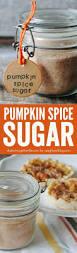 Skinnytaste Pumpkin Bread by Best 25 Pumpkin Spice Bread Ideas On Pinterest Pumkin Bread