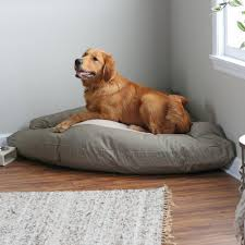 Top Rated Orthopedic Dog Beds by The Very Best Dog Beds For Large Dogs Rover Com