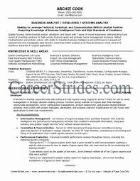 Data Mapping Business Analyst Resume Practical Business Analyst